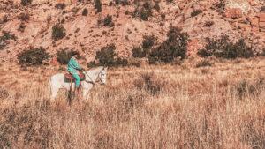 Cowboy in der Prärie auf Pferd